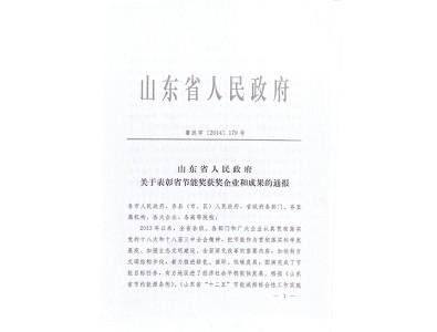 2013年度山东省节能突出贡献企业