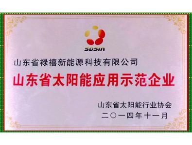 山东省太阳能应用示范企业